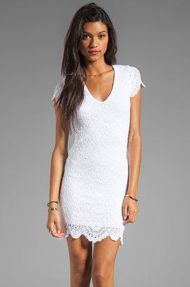 Nightcap Spanish Lace Dress