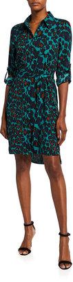 Diane von Furstenberg Prita Animal-Print Belted Shirtdress
