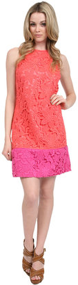 Phoebe Couture Phoebe Color Block Lace Shift in Coral Multi