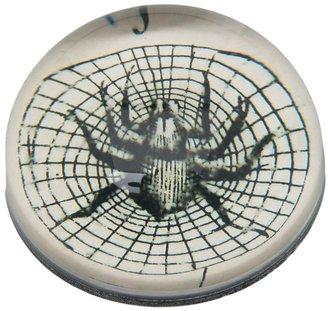 John Derian Maria spider dome paperweight