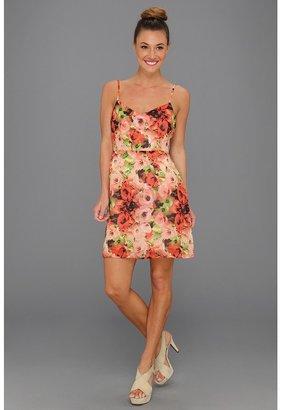 BB Dakota Loe Dress (Poppy Red) - Apparel