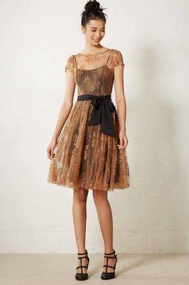 Anthropologie Honeyed Lace Dress