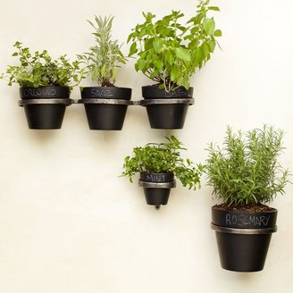 west elm Plant Holder Brackets