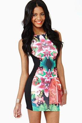 Nasty Gal Tropic Bloom Dress