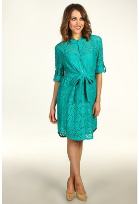 DKNY DKNYC - 3/4 Sleeve Button Thru Dress (Verdant Gren) - Apparel
