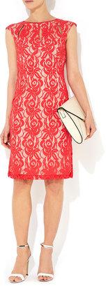 Wallis Coral Lace Dress