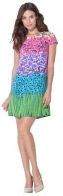 Laundry by Design Floral Field Dress