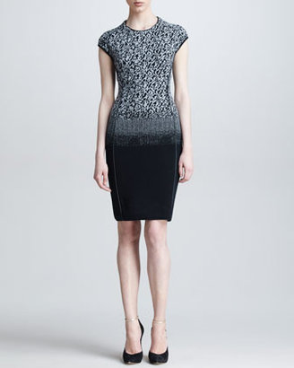 Escada Ombre Leopard Knit Dress