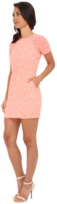 Dolce Vita V Eyelete Lace Dress