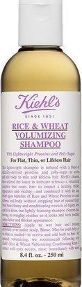 Kiehl's Rice & Wheat Volumizing Shampoo-Colorless