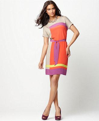 BCBGMAXAZRIA Dress, Louella Scoop Neck Short Sleeve Colorbocked Tie Shift