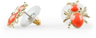 C. Wonder Enamel Beetle Stud Earrings