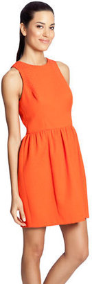 Cynthia Steffe Sleeveless Jacquard Dress