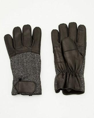 Le Château Leather Glove