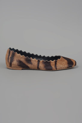 Chloé Tiger Scalloped Flat