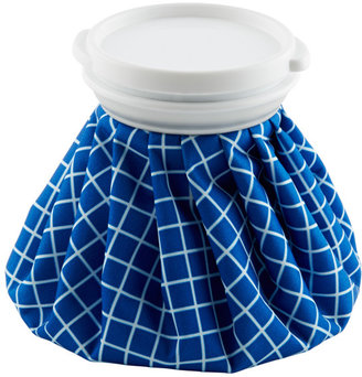 Container Store Vintage Ice Bag Blue & White Checks