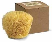 Baudelaire Wool Sponge 4.5