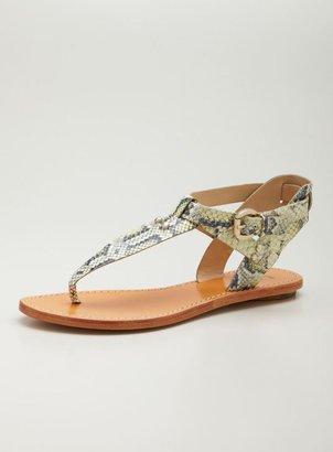 Belle Flat Thong Sandal