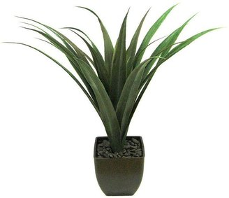 Sonoma life + style® artificial agave plant