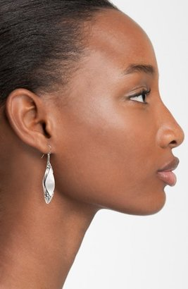 Alexis Bittar 'Lucite®' Large Spear Earrings
