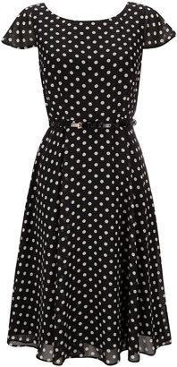 Wallis Petite Polka Dot Print Dress