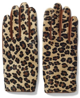 Club Monaco Nicole Haircalf Glove