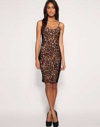 Asos Wild Cat Leopard Pencil Dress
