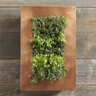 Williams-Sonoma Williams Sonoma Copper Vertical Wall Planter
