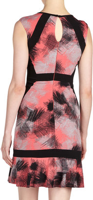 Max & Cleo Jersey-Panel Print Dress, Bright Coral