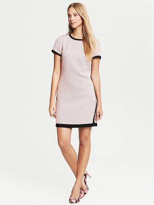 Banana Republic Framed Pink Dress