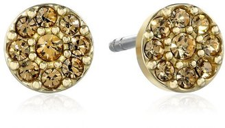 Fossil Disc Gold Stud Earrings