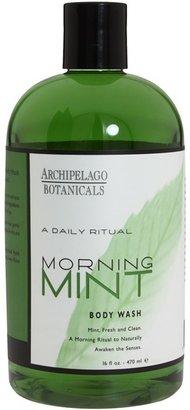 Archipelago Botanicals Morning Mint Body Wash 16 oz (Green) - Beauty