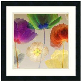 Amanti art ''Poppy Panorama'' Floral Framed Wall Art