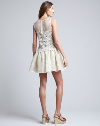 RED Valentino Lace-Embroidered Organza Dress, Ivory