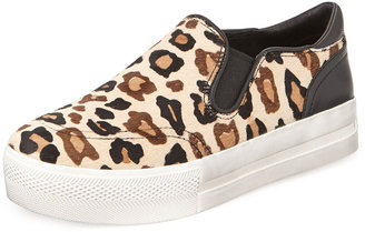 Ash Jungle Leopard-Print Calf Hair Sneaker