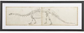 STUDY Dinosaur I Print