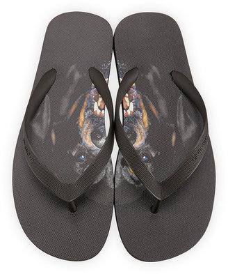 Givenchy Favelas Rottweiler Flip Flops