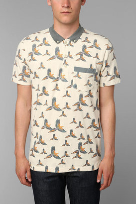 Zanerobe Pirate Polo Shirt