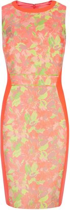 Ted Baker Abenony sleeveless jacquard dress