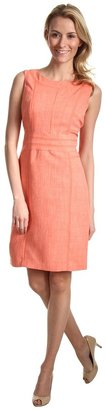 Ellen Tracy Kenya Seamed Dress (Coral) - Apparel