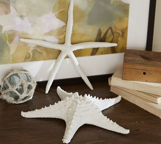 Pottery Barn Faux Finger Starfish