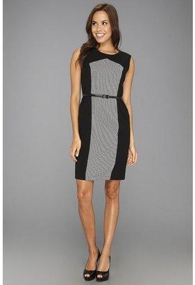Calvin Klein Sleeveless Belted Sheath Dress (Black/Ivory) - Apparel
