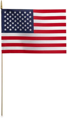 Bed Bath & Beyond Traditional American Flag On A Stick