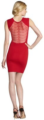 French Connection warm crimson stretch lace detail 'Dani' sleeveless dress
