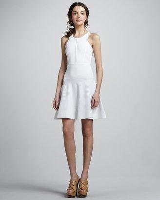 Milly Delilah Flare Dress
