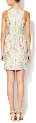 Cynthia Steffe Lola Jacquard Fit and Flare Dress