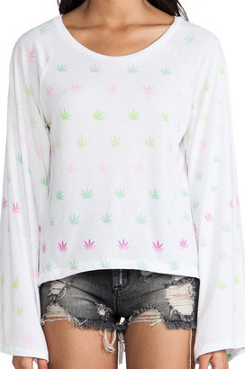 Wildfox Couture Sherbet Stoner