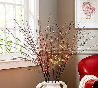 Pottery Barn LED Firework Branch - White