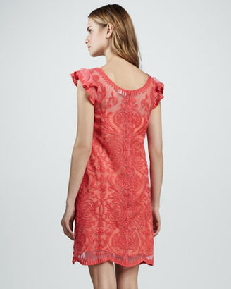 Yoana Baraschi Cap-Sleeve Embroidered Dress