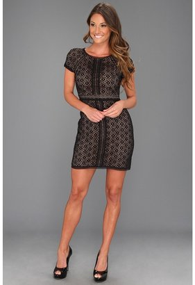 Max & Cleo Chloe All Over Lace (Black) - Apparel